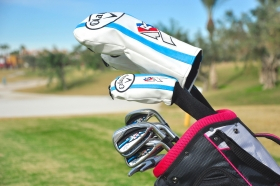 Ladies Premium right hand golf clubs